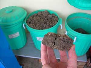 Era caca, es fertilizante. (Fotos: M.A. Gayo)